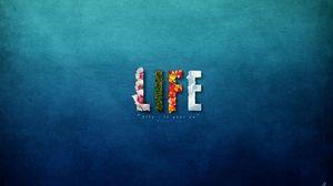 Превью обои жизнь, яркий, цвета, цветы, сладкие