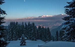 Превью обои зима, горы, снег, деревья, сумерки