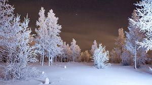 Превью обои зима, лес, снег