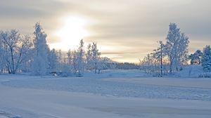 Превью обои зима, зимний пейзаж, деревья, снег, мороз, красиво