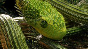 Превью обои змея, зеленый, рептилия, чешуя, 3d