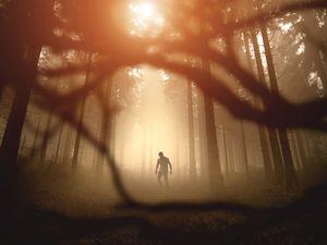 Превью обои зомби, силуэт, лес, деревья, апокалипсис, сумерки