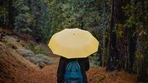Превью обои зонт, человек, прогулка