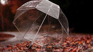 Превью обои зонт, осень, дождь, листва