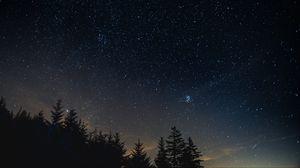 Превью обои звездное небо, ночь, деревья, ночной пейзаж