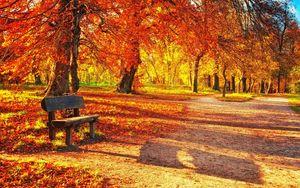 Превью обои скамейка, осень, парк, листва