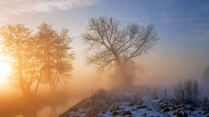 Превью обои снег, трава, дерево