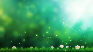Превью обои трава, ромашки, свет, огоньки, арт