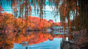 Превью обои центральный парк, нью-йорк, осень, красивый пейзаж