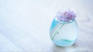Превью обои цветок, банка, стекло, ваза
