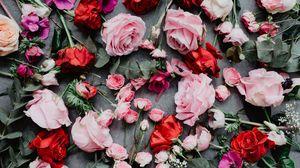 Превью обои цветы, розы, композиция, красный, розовый
