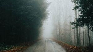 Превью обои туман, дорога, деревья, ветки, осень