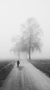 Превью обои туман, одиночество, чб, силуэт, дорога, деревья