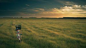 Превью обои велосипед, поле, трава, вечер