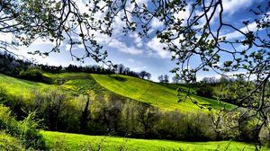 Превью обои весна, поля, деревья, зелень