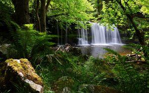 Превью обои водопад, трава, природа, тень