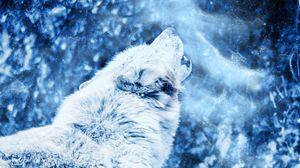 Превью обои волк, вой, хищник, туман, одиночество