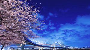 Превью обои япония, хоккайдо, мост, сакура