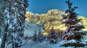 Превью обои зима, горы, австрия, снег, деревья, ель, альпы, природа