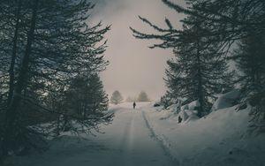 Превью обои зима, снег, силуэт, лес, деревья