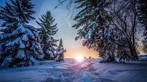 Превью обои зима, снег, солнечный свет, тропинка, деревья