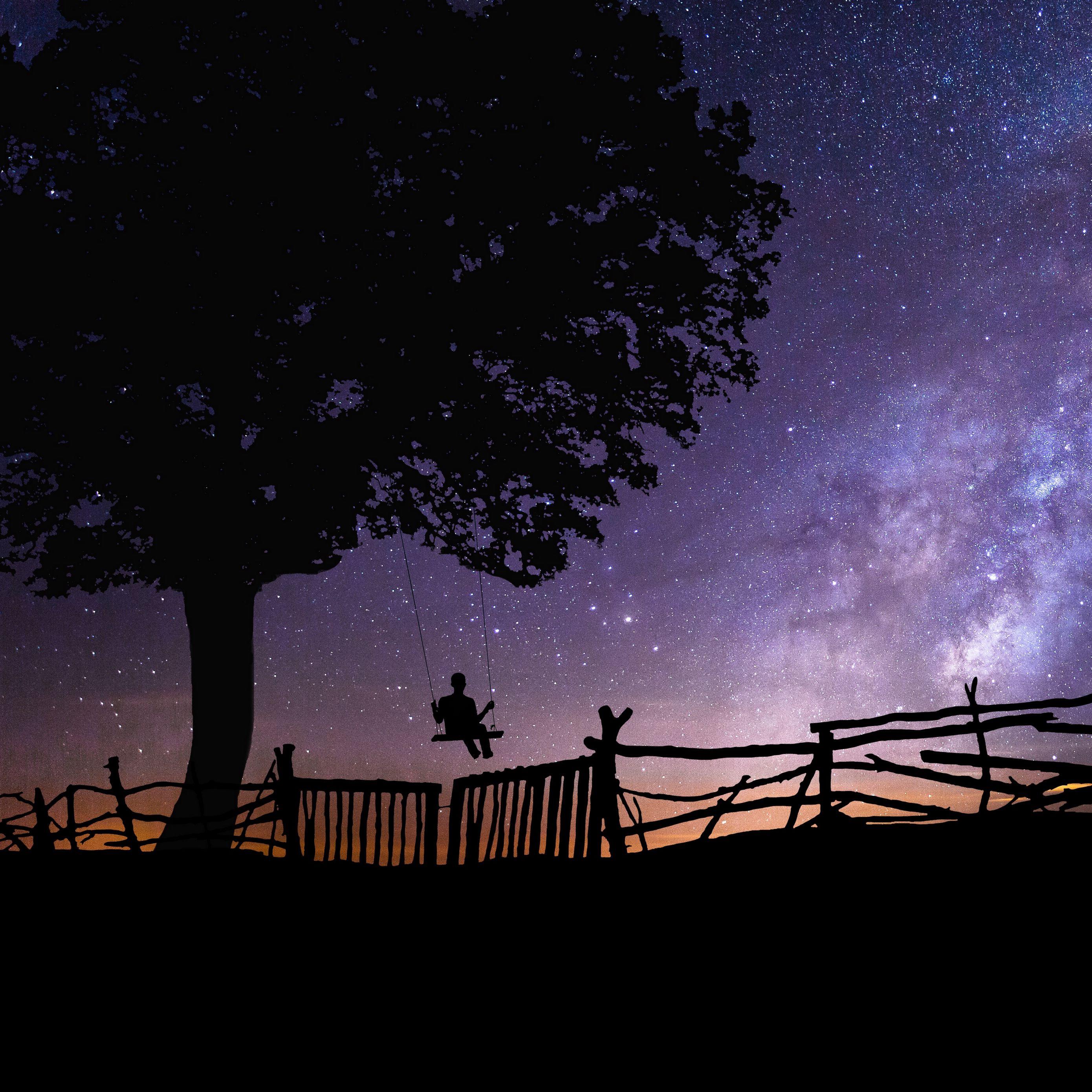 2780x2780 Обои звездное небо, силуэт, качели, дерево, ночь